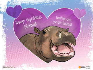 E-CARD: Keep on fighting, Fiona!