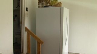 Why newer refrigerators may not work in garage