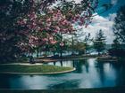 Cincygram takes a stroll through Eden Park