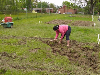 These churches grow food to feed the hungry