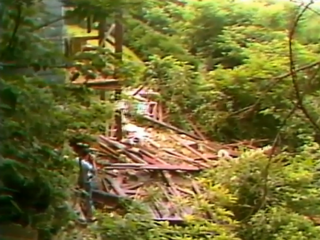 Vault: Balcony collapse breaks up party in 1979