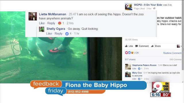 Feedback Friday- Sick of Fiona-