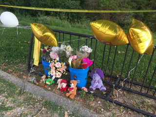 Community mourns 5-year-old who drowned in lake