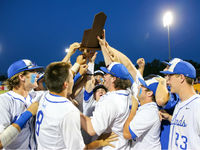Bluebirds flying high for state baseball rematch