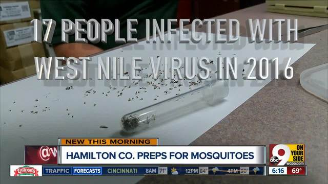 Bloomington mosquito pool tests positive for West Nile Virus