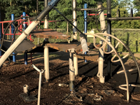 PD: NKY teens face charges in playground fire