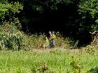 Crews resume search for missing Bracken Co. man