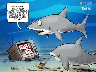 CAPTION THIS: Shark Week