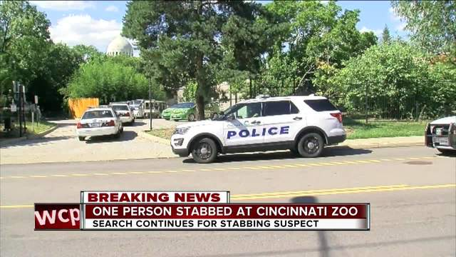 Man injured in stabbing at Cincinnati Zoo