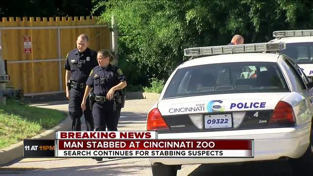 PD: Man stabbed in the throat at Cincinnati Zoo