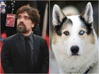 'Game of Thrones' star: Stop adopting huskies