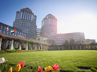 Is P&G's 'shrink to grow' strategy working out?