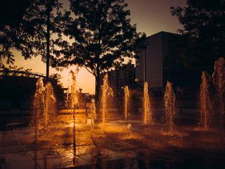 Cincygram: Basking in the evening glow