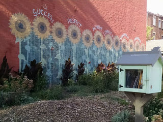 Mailbox libraries a fun page for neighborhoods