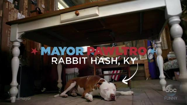 Another ABC commercial features Rabbit Hash-s dog mayor