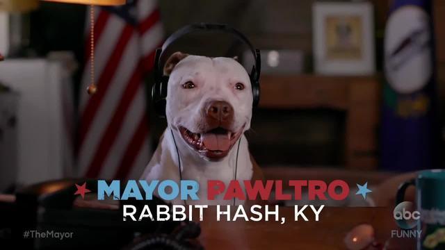 Rabbit Hash-s dog mayor stars in ABC commercial