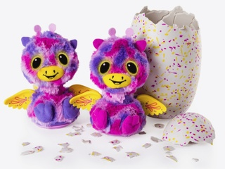 Not again! New Hatchimal frenzy already starting