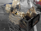 Kroger to phase out plastic bags by 2025