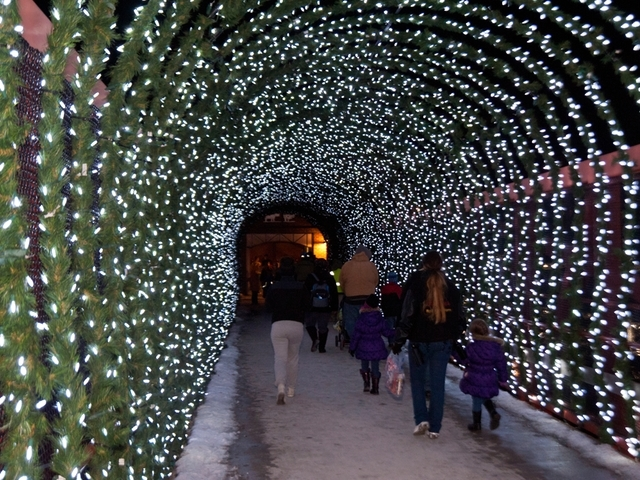 The Cincinnati Zoou0027s Festival Of Lights Kicked Off On Saturday, Nov. 22.  Photo: Joseph Fugua | WCPO