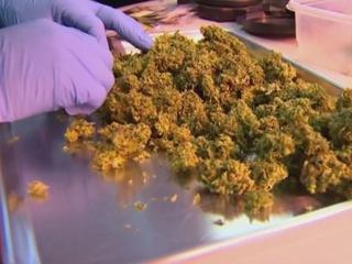 Senator offers bill to legalize pot in Kentucky