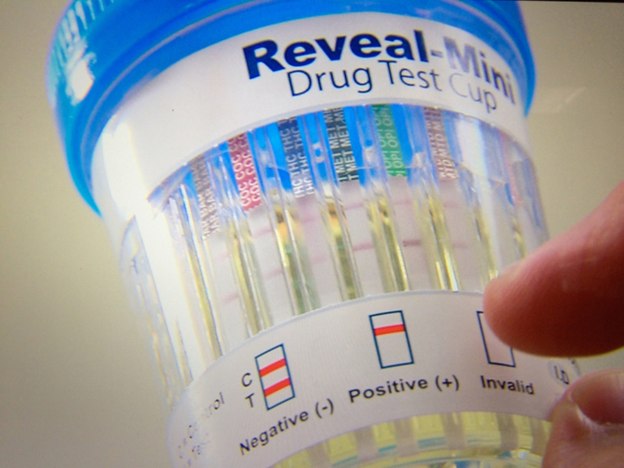 Artificial piss for drug test