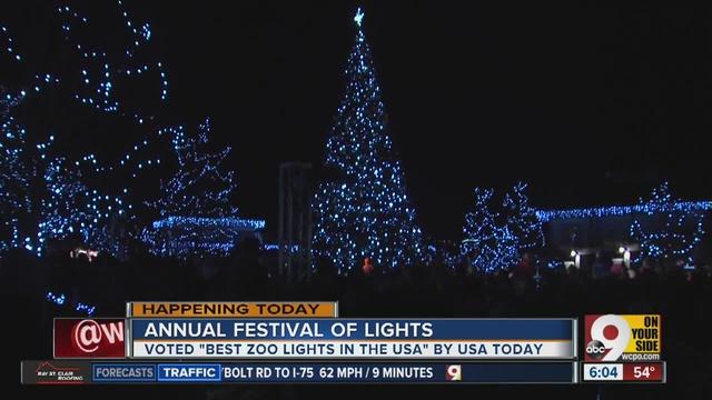 festival of lights at cincinnati zoo making spirits bright this holiday season