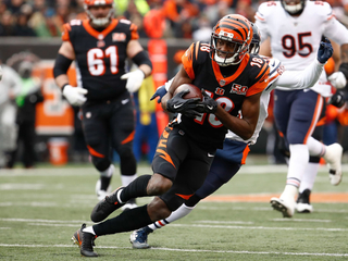 Bengals lose to Bears 33-7