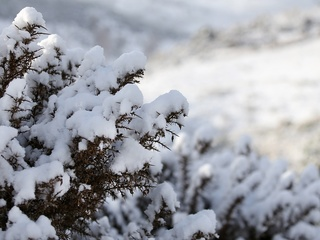 Frigid temps and another snow chance