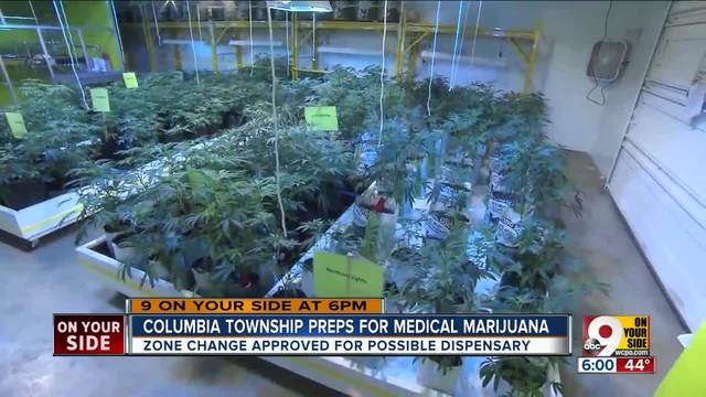 Legal Marijuana Proposal Could Be Coming Back To Ohio Ballot Wcpo