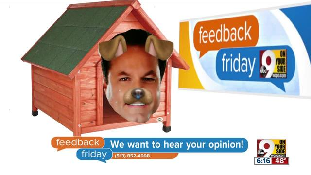 Feedback Friday- Steve in the doghouse