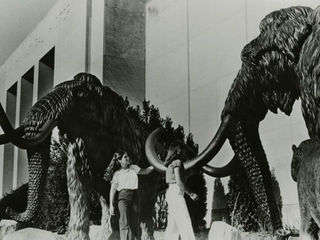 Woolly mammoths once stood on Gilbert Avenue