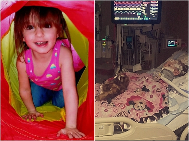 3-year-old dies days after baby sitter indicted