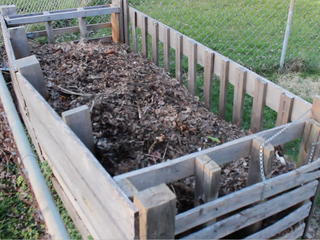 VIDEO: How to start composting in your backyard