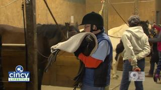 Volunteers to Provide Horse Riding Therapy
