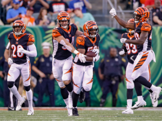 Broo View: Bengals will be better this season
