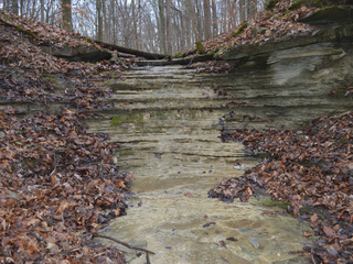 Versailles State Park history project gets grant